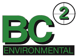 BC2 portfolio